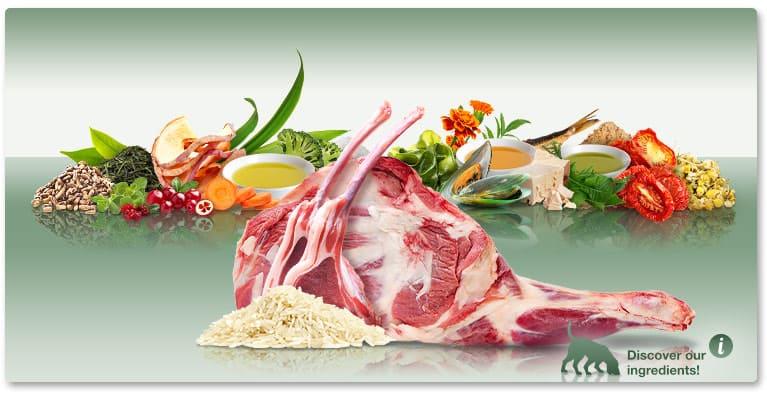 Висококачествена Суха Кучешка Храна Platinum Adult Lamb and Rice