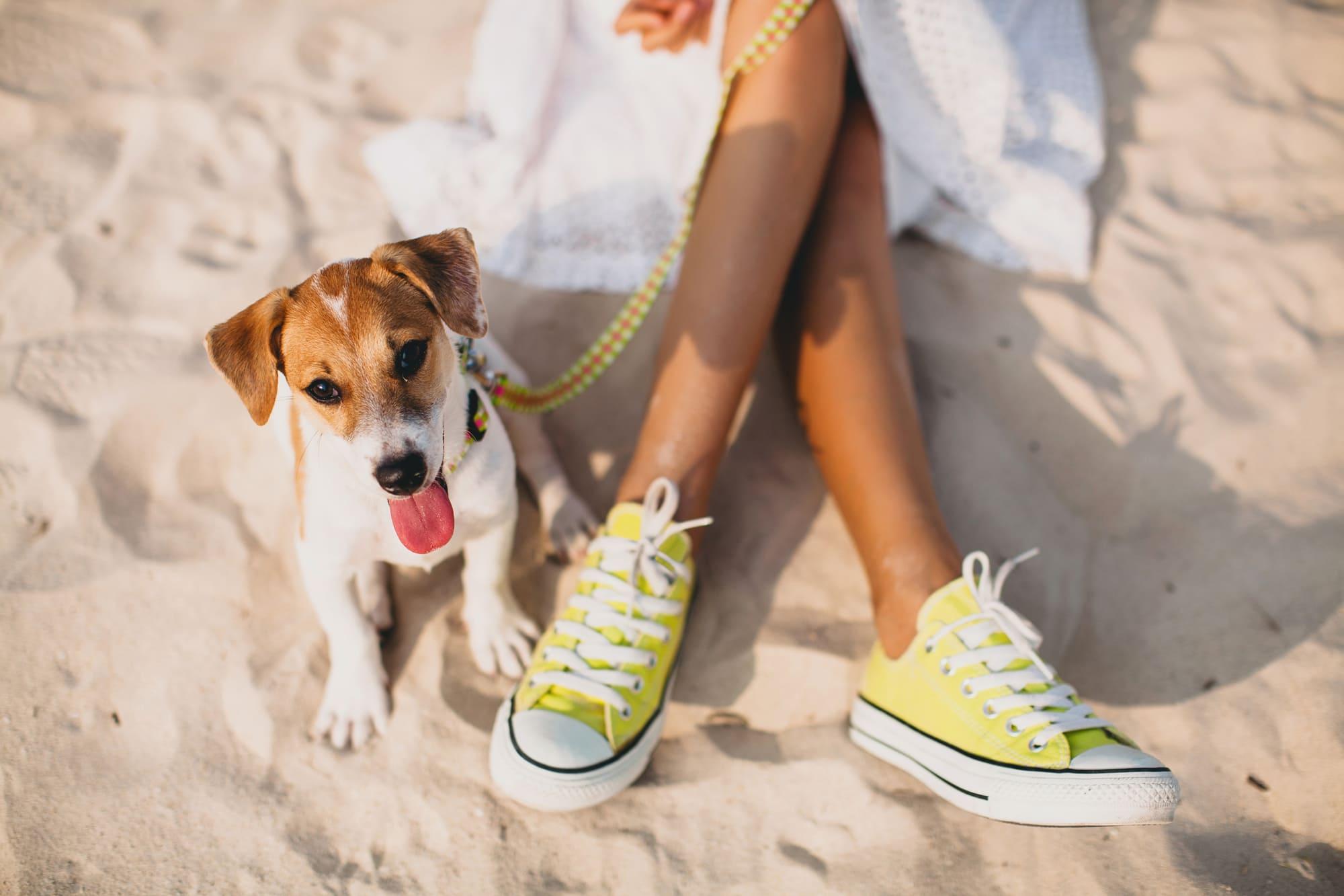 С куче на море – 5 съвета как приключението да завърши добре